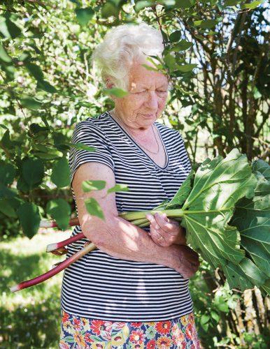 portrait grandma fotograf Gotland Linnea Ronström