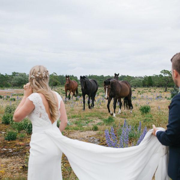 Bröllopsfotograf Gotland - SOFIA & HENRIK